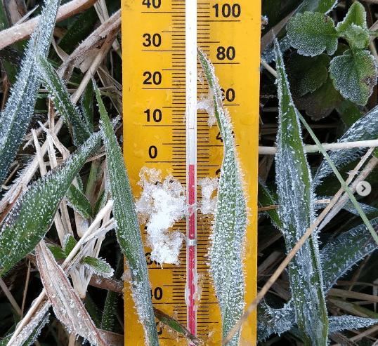 Dieng Membeku Lagi, Suhu di Bawah 0 Derajat Celcius 0 (0)